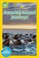 Go to record Great migrations. Amazing animal journeys
