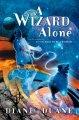 Go to record A wizard alone