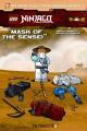 Go to record Mask of the Sensei
