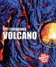 Go to record Volcano
