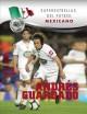 Go to record Andres Guardado