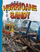 Go to record Superstorm Sandy