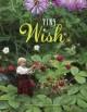 Go to record The tiny wish