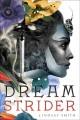 Go to record Dreamstrider