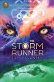 Go to record The storm runner