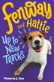 Go to record Fenway and Hattie up to new tricks
