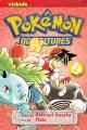 Go to record Pokémon adventures. Volume 2
